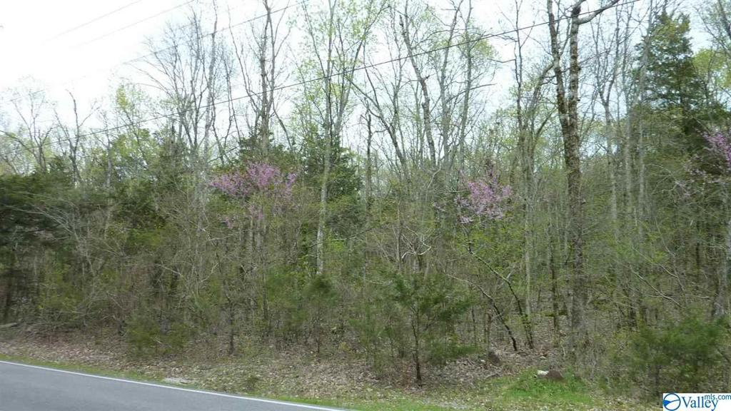 Photo of home for sale at Hickory Hill Road, Decatur AL