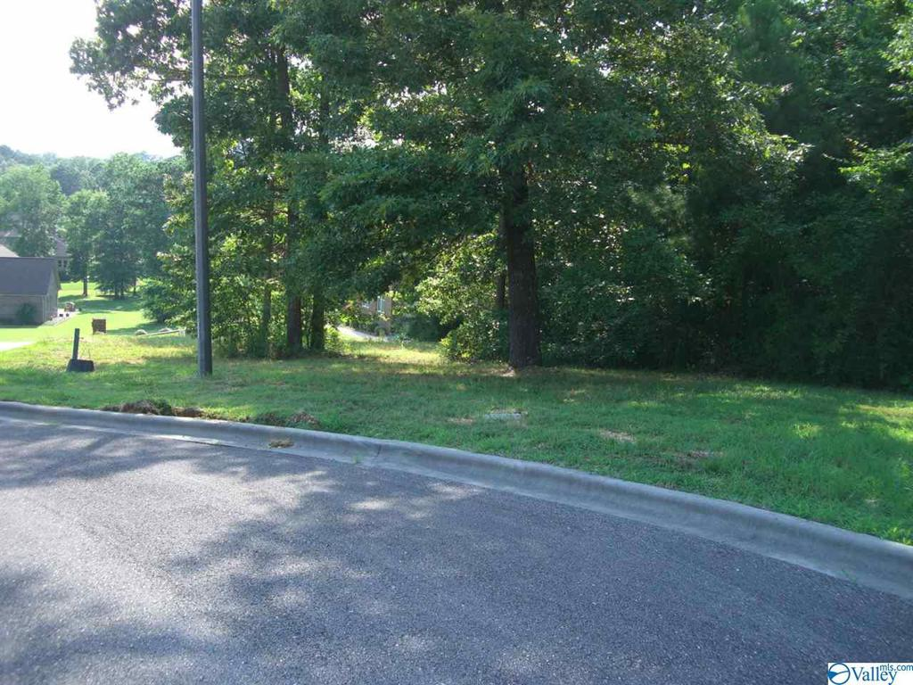 Photo of home for sale at Lot 27 Paradise Place, Scottsboro AL
