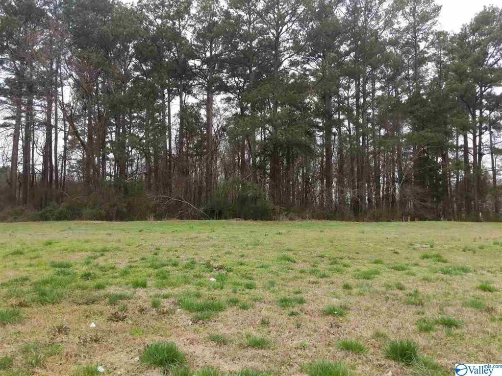 Photo of home for sale at 0 Danville Road, Decatur AL
