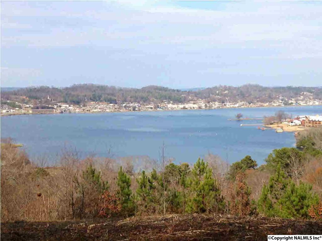 Photo of home for sale at Woodvue Road, Guntersville AL