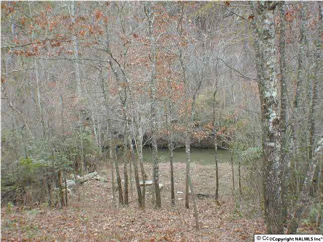 Photo of home for sale at Road 9002, Mentone AL