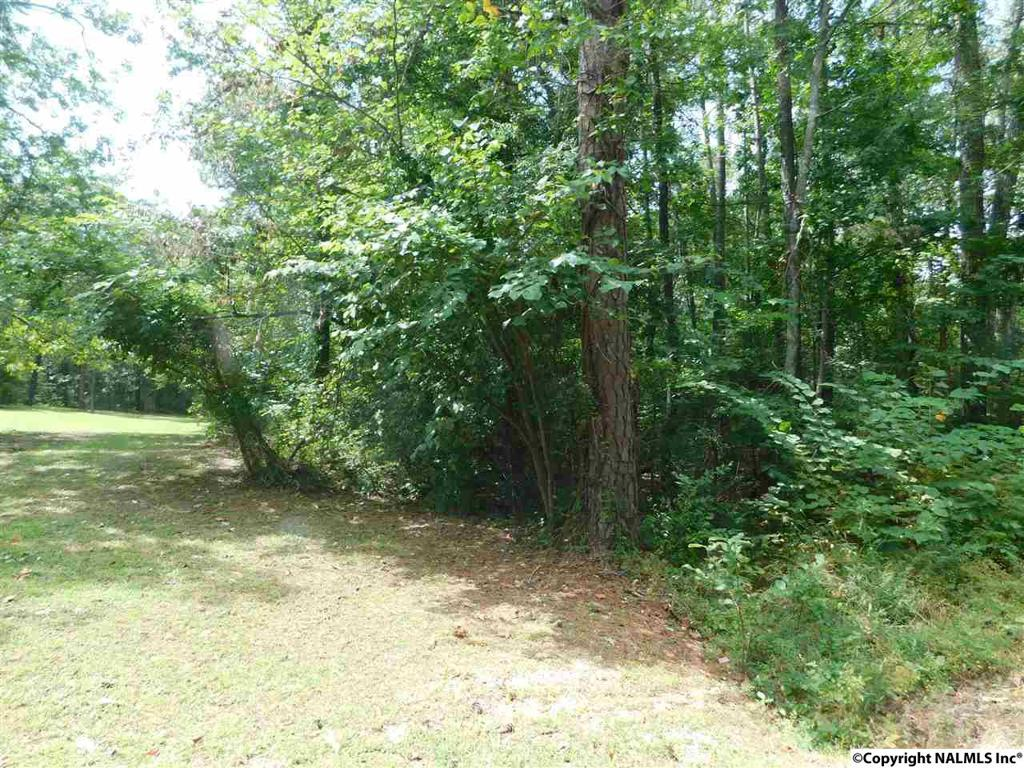 Photo of home for sale at Lot 37 County Road 683, Cedar Bluff AL