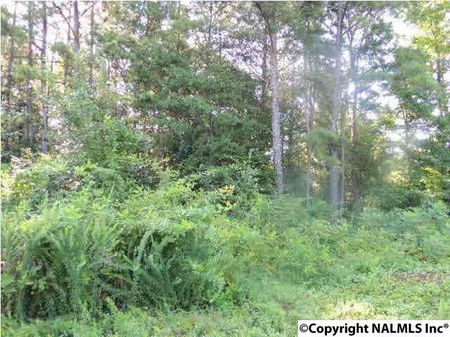 Photo of home for sale at 40 Ridge Road, Leesburg AL