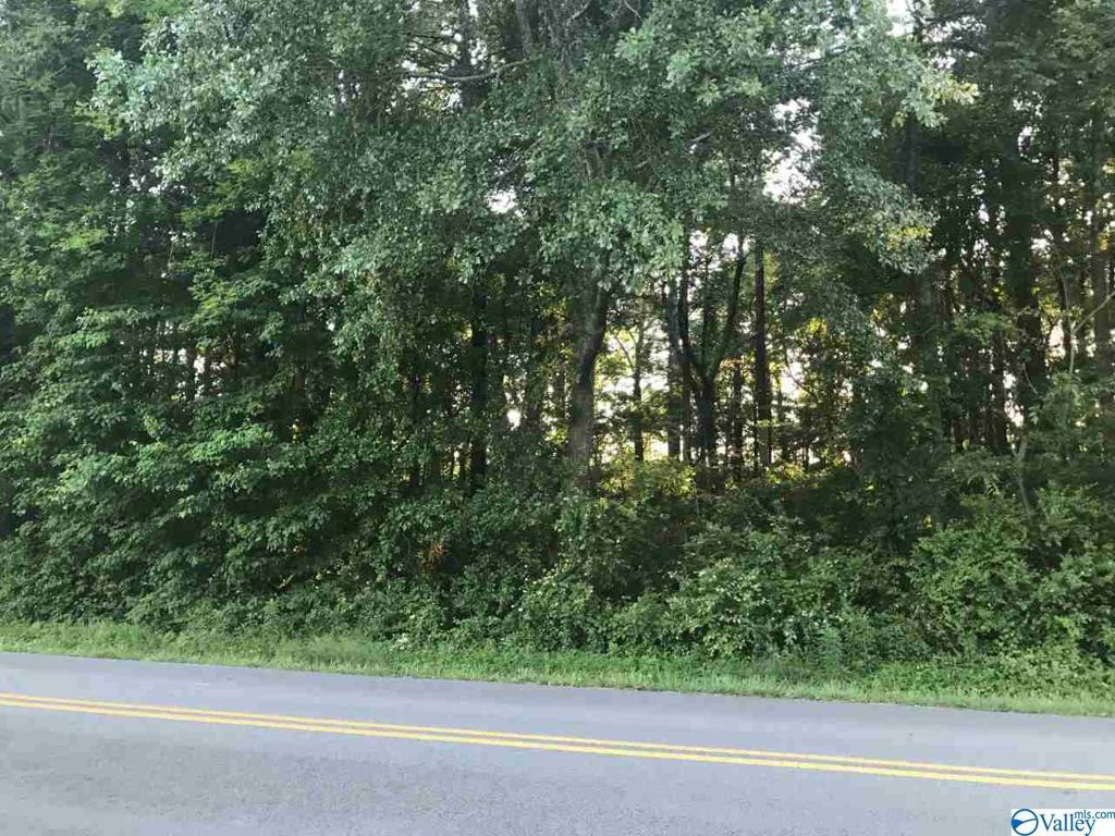 Photo of home for sale at 0 Smalley Drive, Arab AL