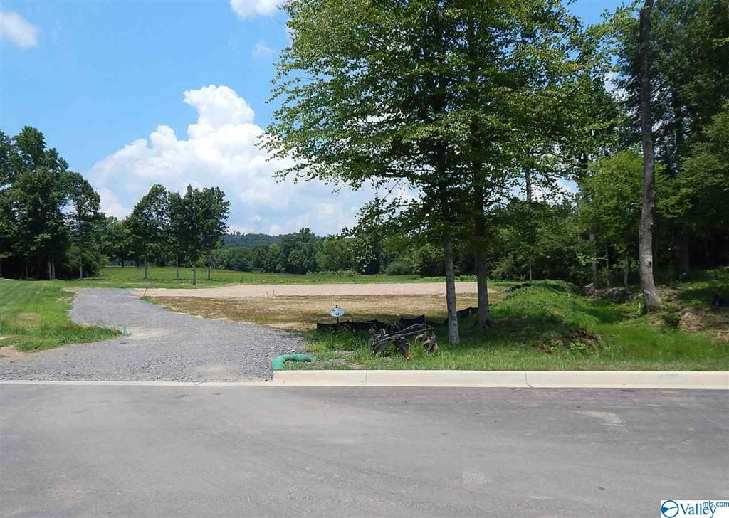 Photo of home for sale at 292 Greystone Pass, Guntersville AL