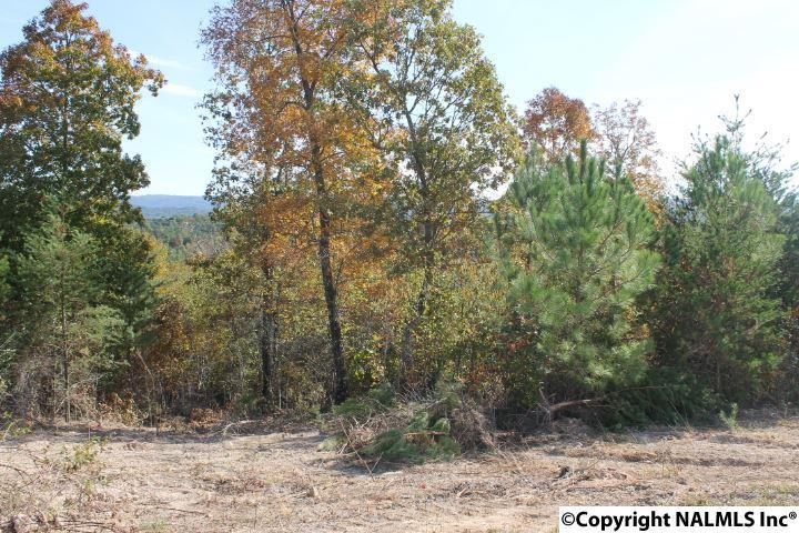 Photo of home for sale at Lot 12 Hillside Drive, Fort Payne AL