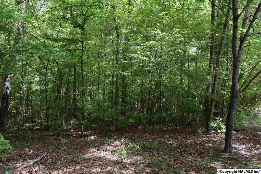 Photo of home for sale at Highway 278, Hokes Bluff AL