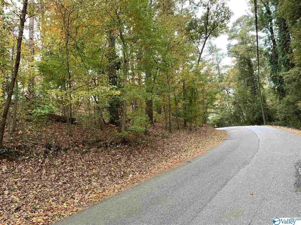 Photo of home for sale at 0 Arc 3 Drive, Gadsden AL