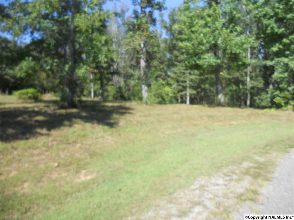 Photo of home for sale at Chera Trail, Grant AL