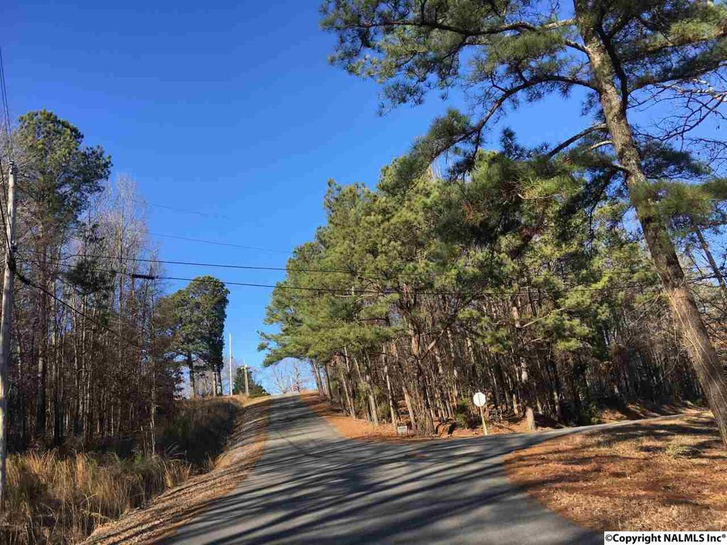 Photo of home for sale at 00 County Road 514, Trinity AL
