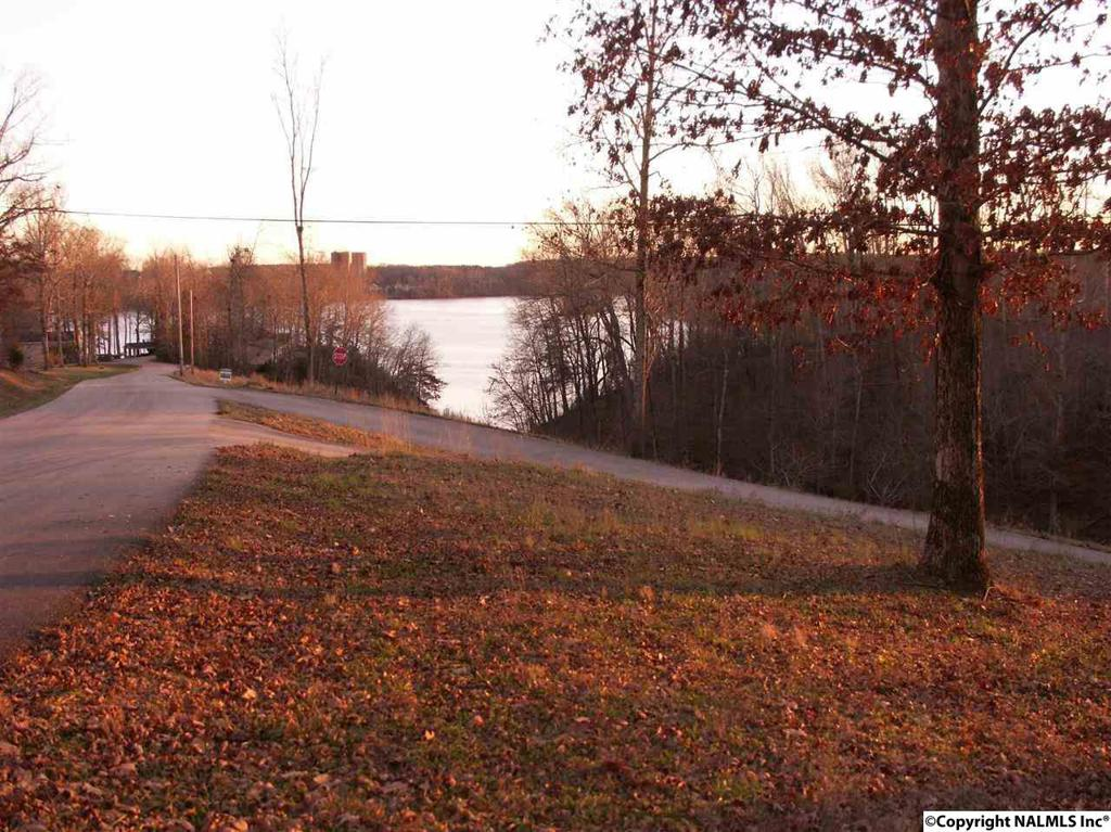 Photo of home for sale at County Road 570, Rogersville AL