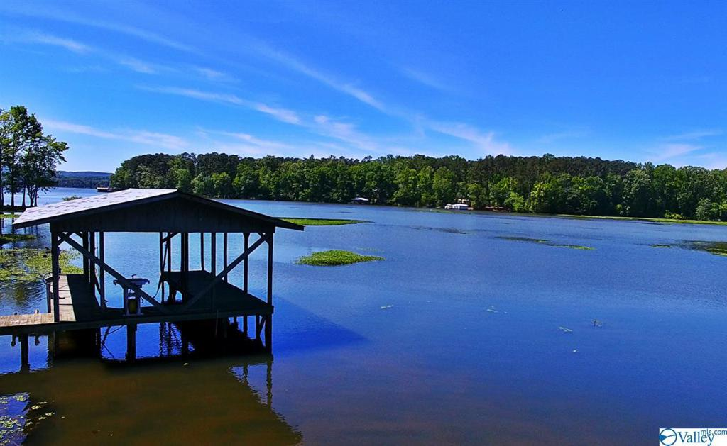 Photo of home for sale at 1701 Pell Street, Scottsboro AL