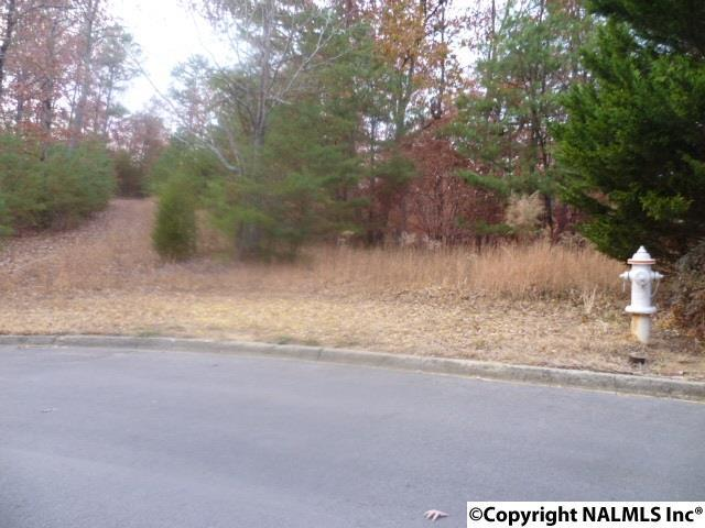 Photo of home for sale at Driver Road, Fort Payne AL