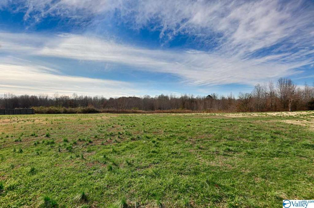 Photo of home for sale at 16331 Mooresville Road, Athens AL