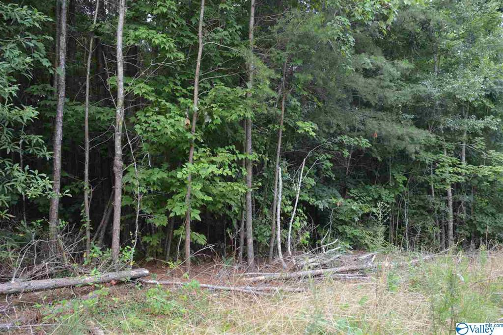 Photo of home for sale at LOT # 36 County Road 224, Dutton AL