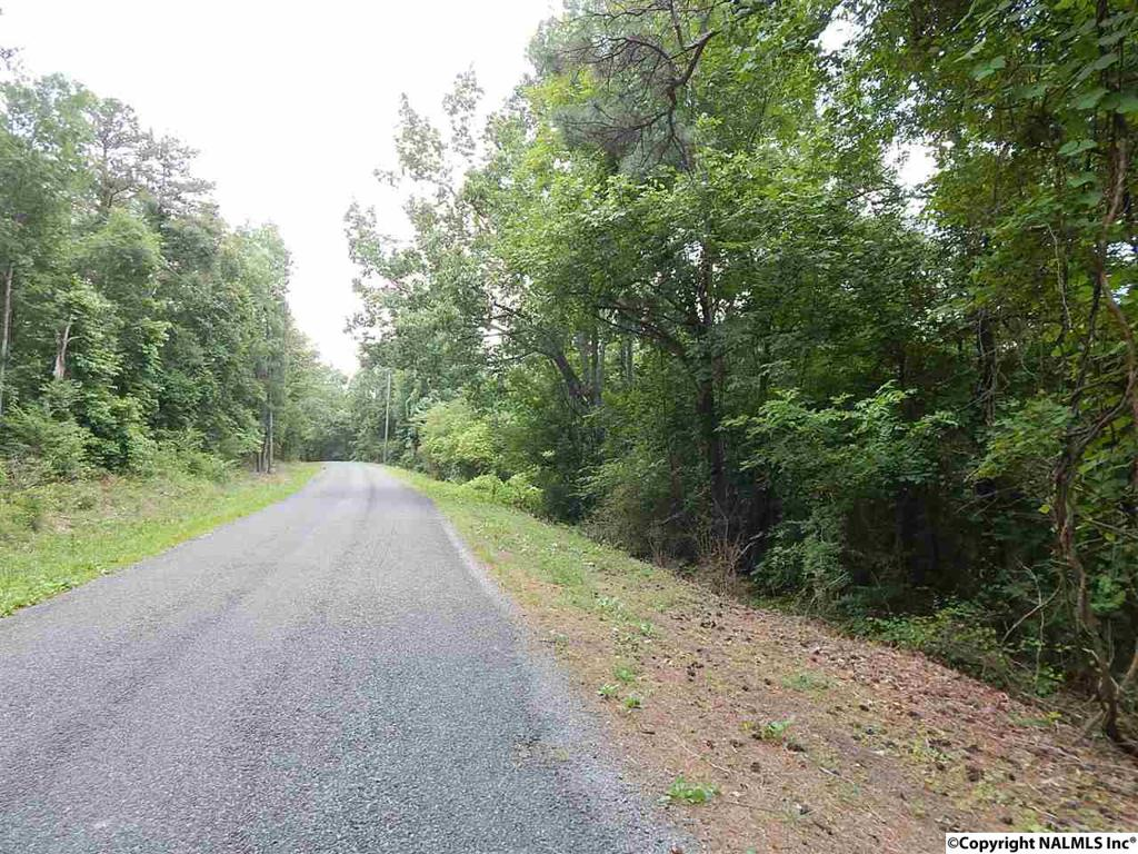 Photo of home for sale at Thompson Falls Drive, Guntersville AL