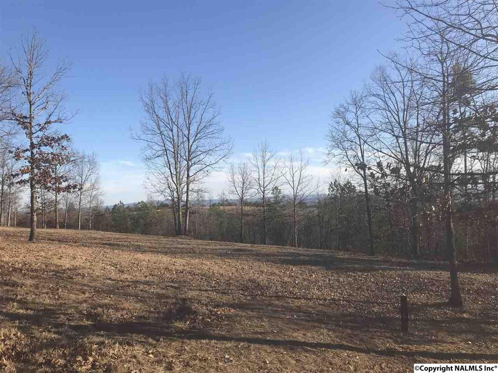 Photo of home for sale at County Road 1016, Cedar Bluff AL