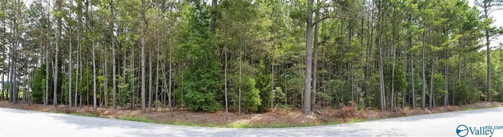 Photo of home for sale at 000 Oak Grove Road, Elkmont AL