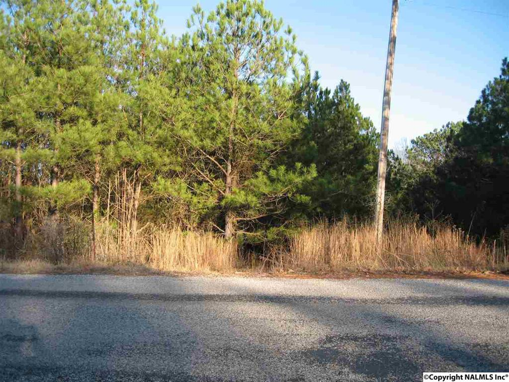 Photo of home for sale at 0 Pritchard Road, Russellville AL