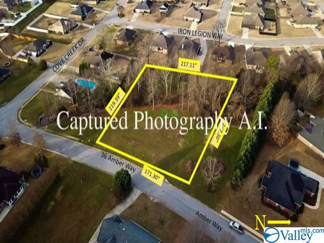 Photo of home for sale at 36 Amber Way, Decatur AL
