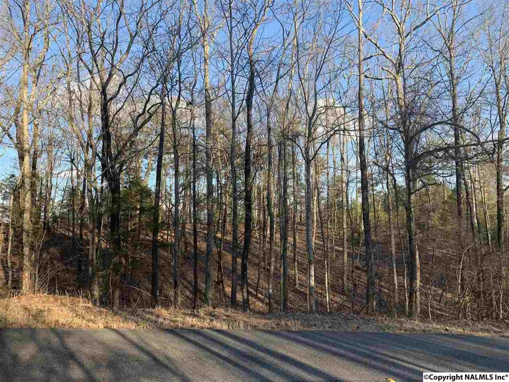 Photo of home for sale at 931 Blowing Cave Road, Gurley AL