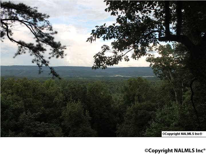 Photo of home for sale at County Road 1010, Fort Payne AL