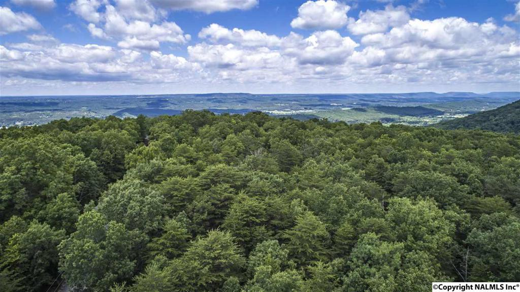 Photo of home for sale at 000 Lookout Mountain Parkway, Mentone AL