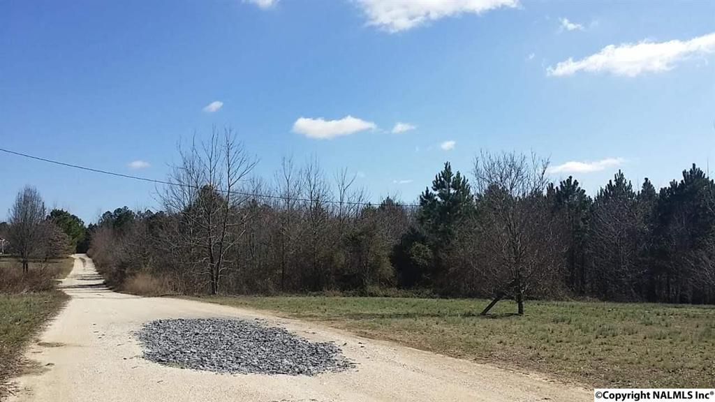 Photo of home for sale at Lot 8 Road 9063, Henagar AL