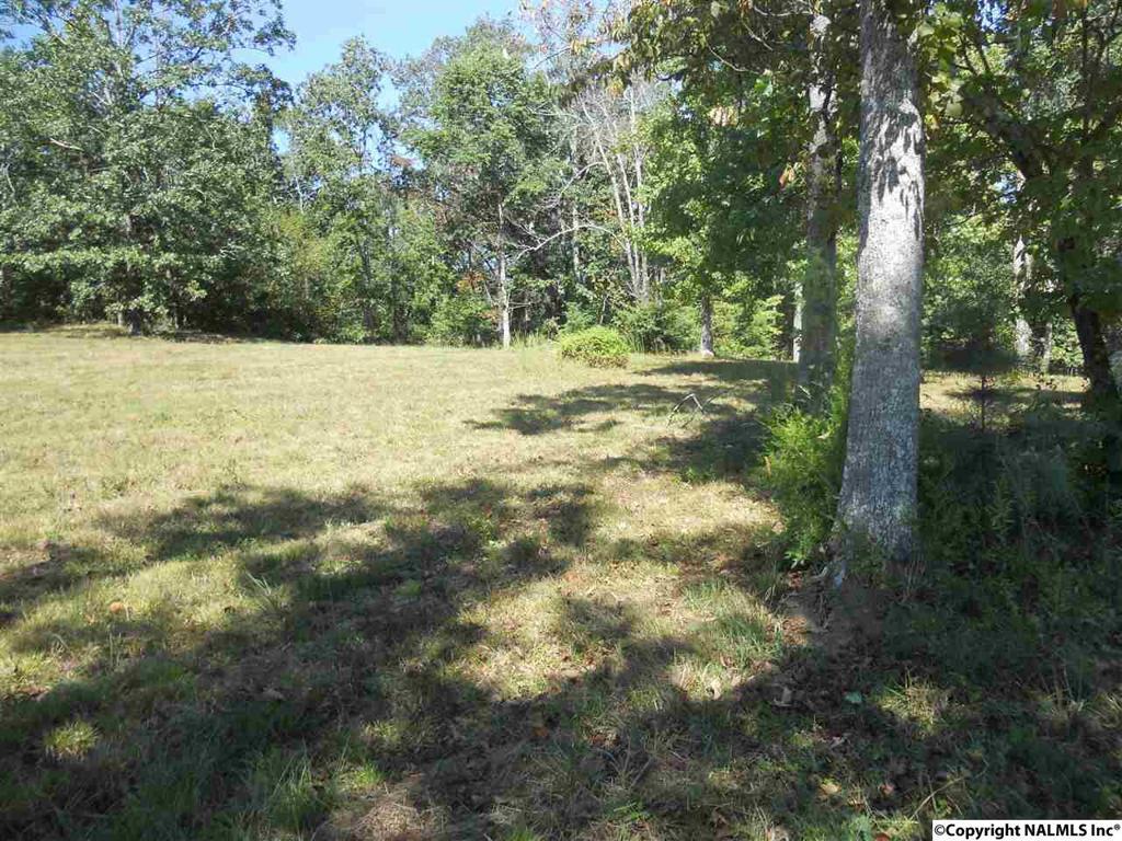 Photo of home for sale at 13 Chera Trail, Grant AL