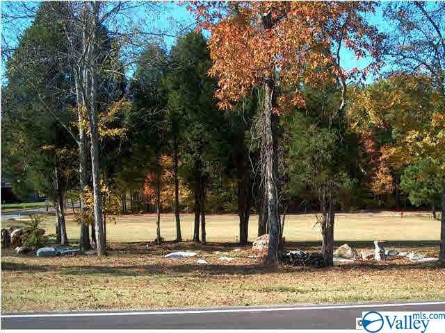 Photo of home for sale at Cade Circle, Leesburg AL