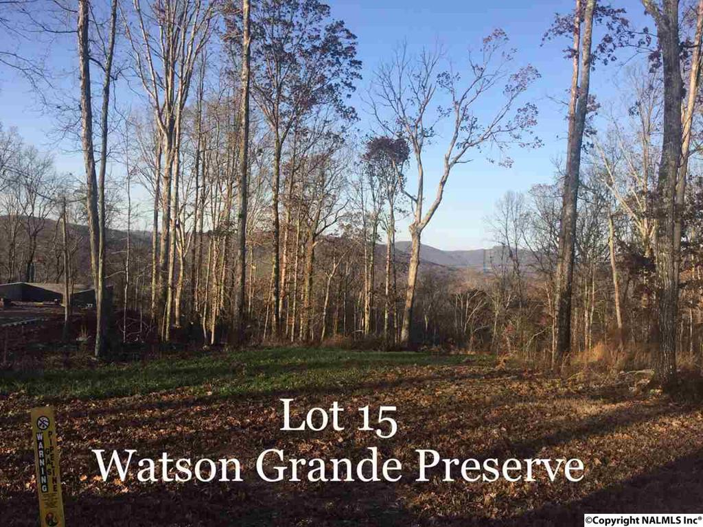 Photo of home for sale at Watson Grande Way, Owens Cross Roads AL