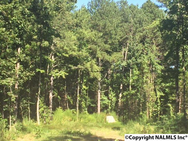Photo of home for sale at 0000 Winding Creek Road, Huntsville AL