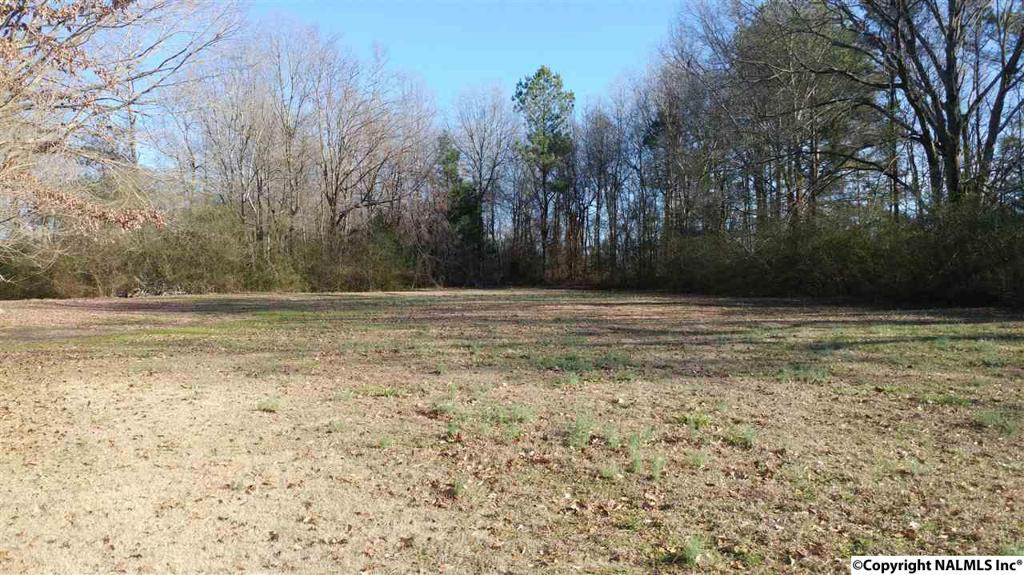 Photo of home for sale at Bethel Street, Hartselle AL
