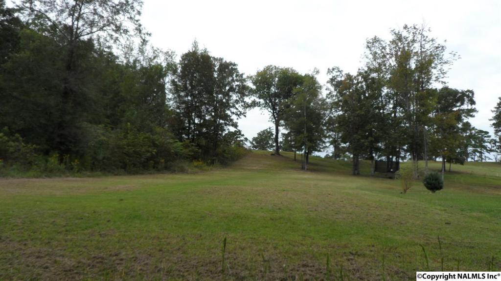 Photo of home for sale at Oak Street, Glencoe AL