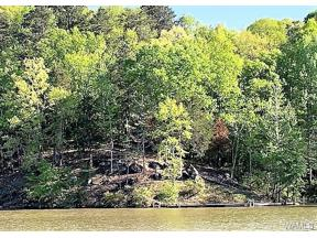 Property for sale at 11760 High Cliff Drive, Northport,  AL 35475
