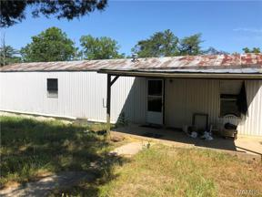 Property for sale at 12817 Hargrove Road E, Cottondale,  Alabama 35453