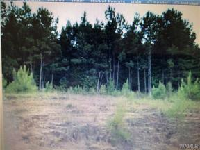 Property for sale at 23 TIMBERTOP Lane 23, Fosters,  AL 35463