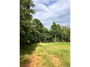 Property for sale at 01 BIRMINGHAM Road, Centreville,  Alabama 35042
