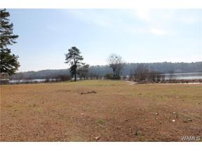 Property for sale at 0 Stonehedge Cliffs Road, Northport,  AL 35475