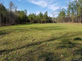 Property for sale at 80 Brownville Road, Northport,  AL 35475