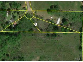 Property for sale at LOT 41B DAIRY FARM Road, Moundville,  AL 35474