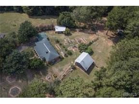 Property for sale at 13956 Doyle Beams Rd, Cottondale,  Alabama 35453