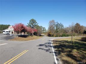 Property for sale at 16350 County Rd 53 N, Eldridge,  Alabama 35554