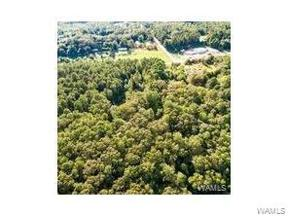 Property for sale at 17699 Hwy 43 N, Northport,  AL 35475