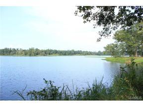 Property for sale at 83 Black Warrior Bay, Akron,  Alabama 35441