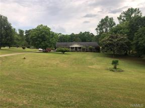 Property for sale at 17403 North Hagler Road, Northport,  AL 35475