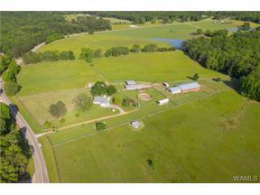 Property for sale at 16340 YELLOW CREEK Road, Tuscaloosa,  AL 35406