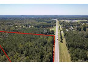 Property for sale at 0 Hwy 43 N, Northport,  Alabama 35475