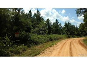 Property for sale at 0 Co Rd 50, Moundville,  AL 35474