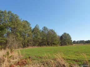 Property for sale at 36981 HIGHWAY 69 S, Moundville,  AL 35474